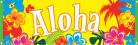 Bannière Aloha Hawaï