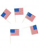 30 pics drapeaux USA