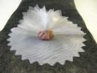 10 voiles rond brillant dragées blanc