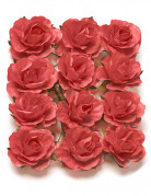12 Roses à piquer corail