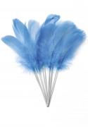 12 Plumes bleu turquoise sur pic
