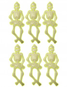 6 Petits squelettes phosphorescents 15 cm Halloween
