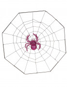 Toile d'araignée ventouse Halloween