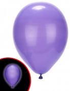5 Ballons LED violets Illooms ®