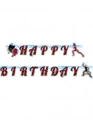 Guirlande en carton Happy Birthday Ladybug™ 2 m