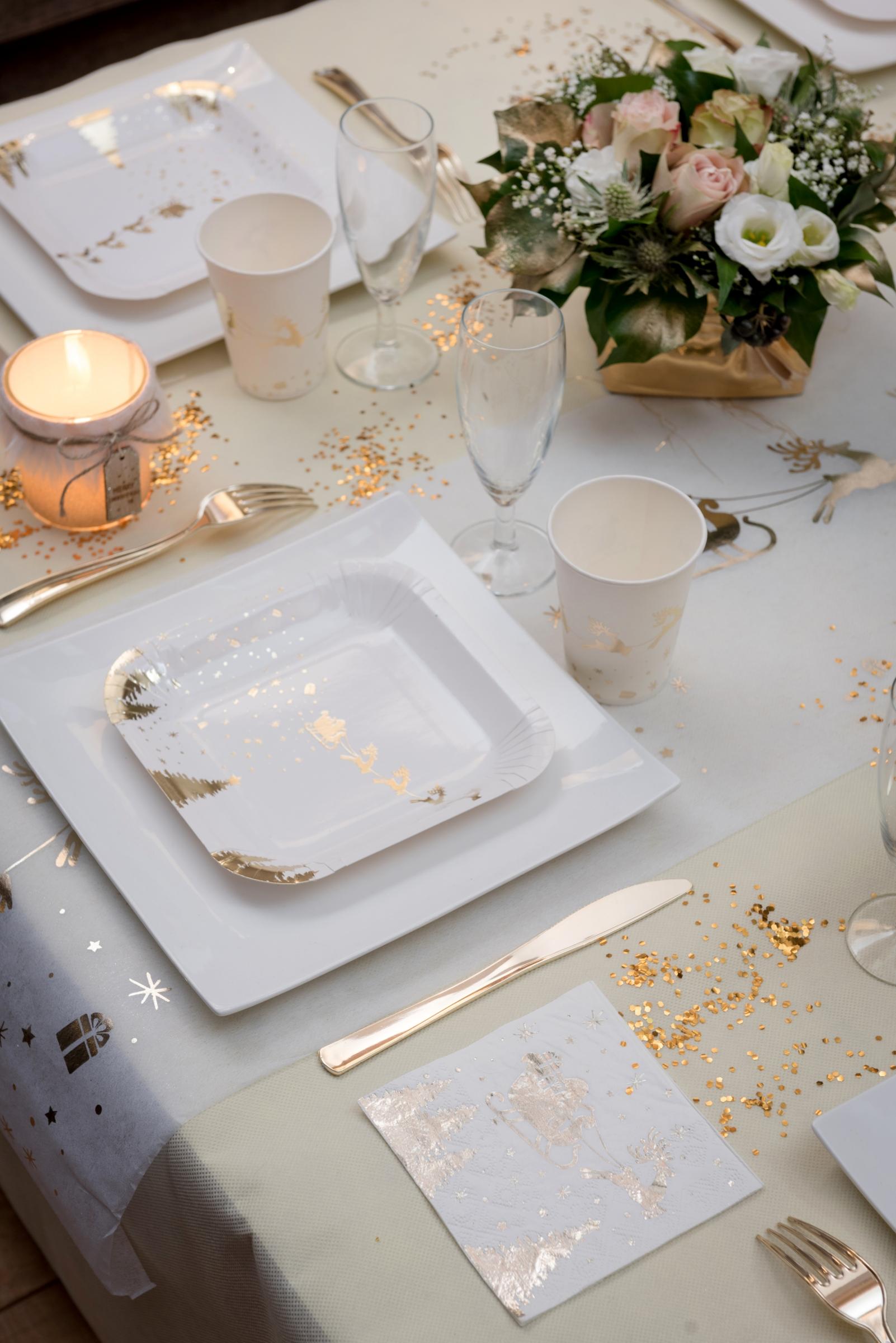 10 petites assiettes en carton tra neau du p re no l blanc. Black Bedroom Furniture Sets. Home Design Ideas