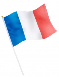 Drapeau de supporter France