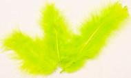 20 Plumes de décoration vertes anis 5,5 cm