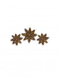 6 Décorations en résine anis étoilé 3 et 2,5 cm