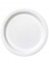 16 Assiettes blanche en carton 23 cm