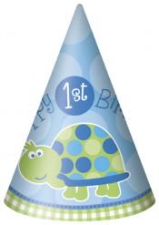 8 Chapeaux bleus First birthday