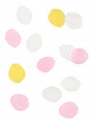 Confettis pétale de fleurs en papier 20 g