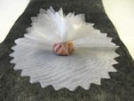 10 Voiles rond brillant dragée blanc 24 cm