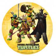Disque azyme 20 cm Tortues Ninja & Shredder™