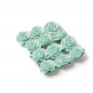 12 Roses à piquer menthe