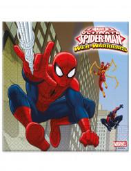 20 Serviettes en papier Spiderman™ 33 x 33 cm
