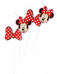 6 Pailles  Minnie™