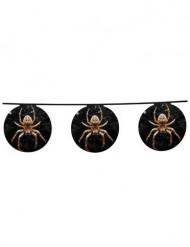 Guirlande en papier araignée 4 m Halloween