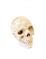 Marque place en résine Crâne 4,5 x 5,5 cm
