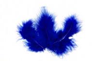 20 Plumes de décoration bleu roi 10 x 4 cm