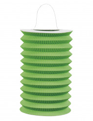 Lampion en papier vert