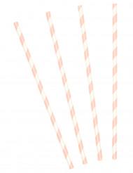 10 Pailles en carton rayées rose 19,5 cm