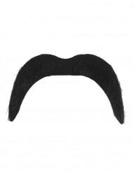 Moustache crazy seventies