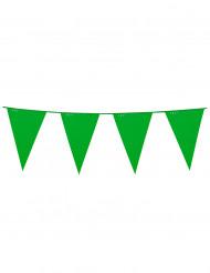 Guirlande à fanions verts 10m