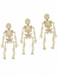 3 Petites décorations squelettes 12 cm