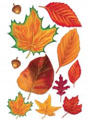 Assortiment de 11 feuilles d'automne