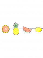 Mini guirlande fruits exotiques 3 mètres