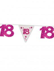 Gurilande fanions anniversaire 18 ans rose