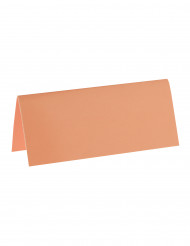 10 Marque-places rectangle corail