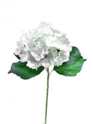 Fleur artificielle Hortensia 70 cm