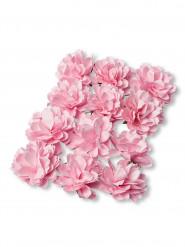 12 Pivoines en papier roses 4 cm