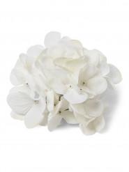 6 Hortensias blancs en tissu