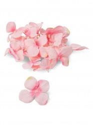 150 Pétales d'hortensia roses