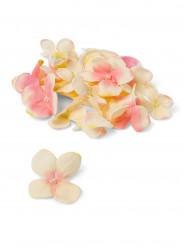 Pétales d'hortensia en tissu ivoire rose