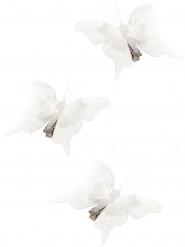 3 Papillons sur pince blancs