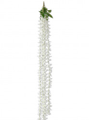 Descente de lys blanc 165 cm
