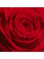 20 Serviettes en papier rose rouge