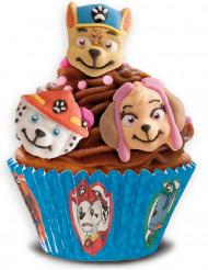 9 Décorations pour gâteaux en sucre Pat'Patrouille™