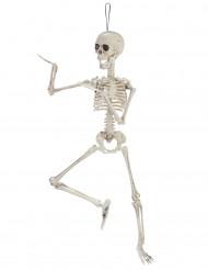 Décoration squelette articulé 48 cm