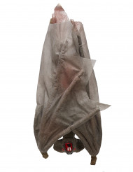 Décoration chauve-souris à suspendre 30 cm