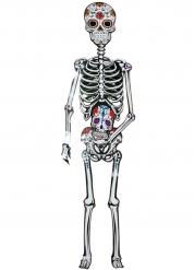 Décoration squelette cartonné Dia de los muertos 152 cm