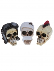 Décoration petite tête de mort modèle aléatoire 14 cm
