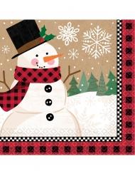 16 Serviettes en papier bonhomme de neige 33 x 33 cm