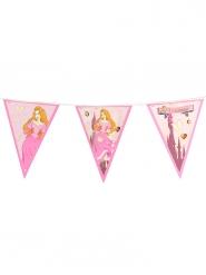 Guirlande fanions Princesse 270 cm