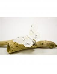 4 Pinces décoratives grand Papillon ivoire 8 x 8 cm