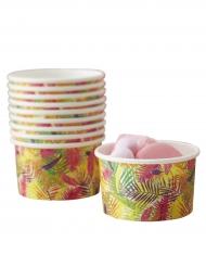 8 Petits pots à glace Tropical 14 cl